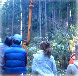 木の檜を訪ねる旅 みゆきホーム
